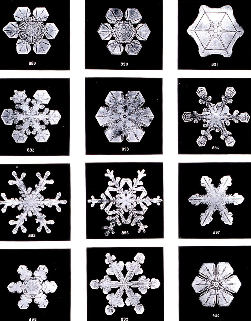 Snowflakes-winter-575930_1124_1437